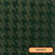 A25/E75