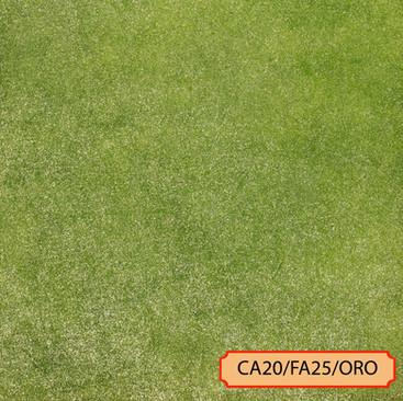 CA20/FA25/ORO