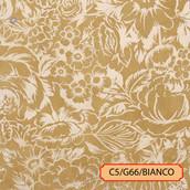 C5/G66/BANCO
