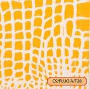 C9/FLUO A/T28