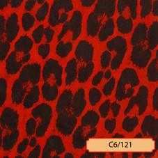 C6/121
