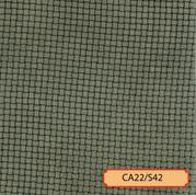 CA22/S42
