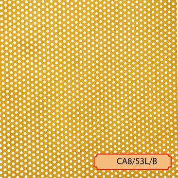 CA8/53L/B