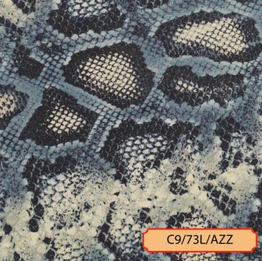 C9/73L/AZZ