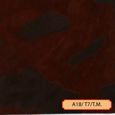A18/T7/T.M.