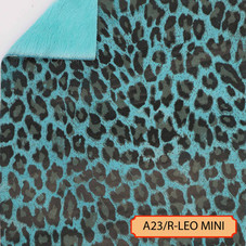 A23/R-LEO-MINI