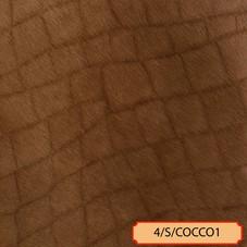4/S-COCCO1