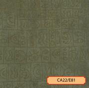 CA22/E81