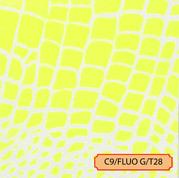 C9/FLUO G/T28