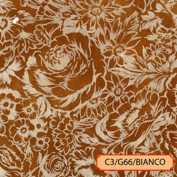 C3/G66/BIANCO