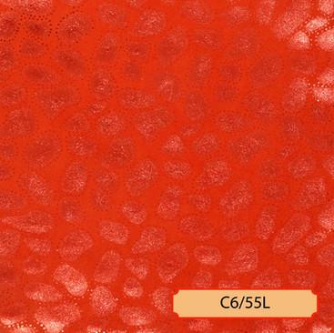 C6/55L