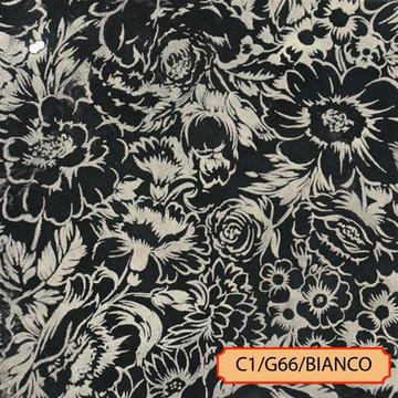 C1/G66/BIANCO