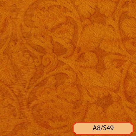 A8/S49