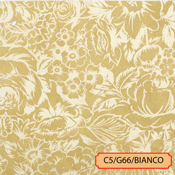 C5/G66/BIANCO