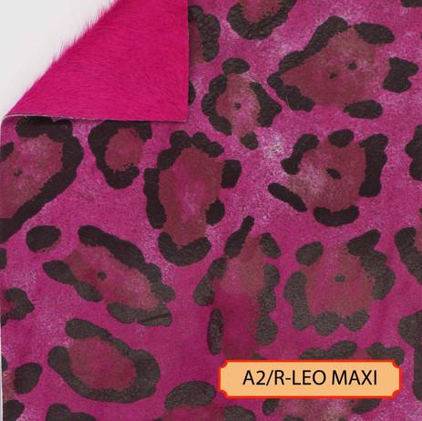 A2/R-LEO MAXI