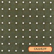 CA22/E27F