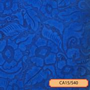CA15/S40