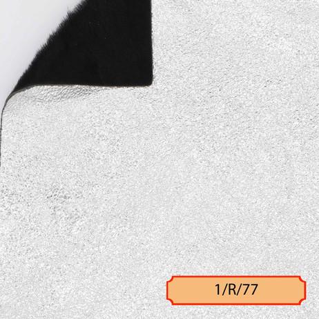 1/R/77