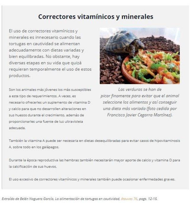 Que comen las tortugas terrestres en cau