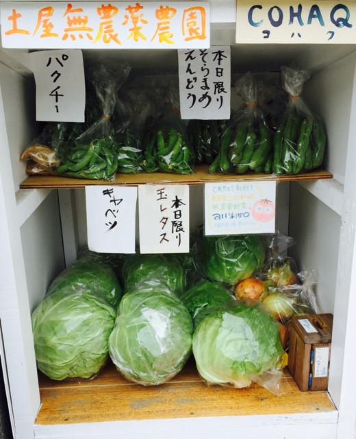 新鮮 野菜 無農薬 旬