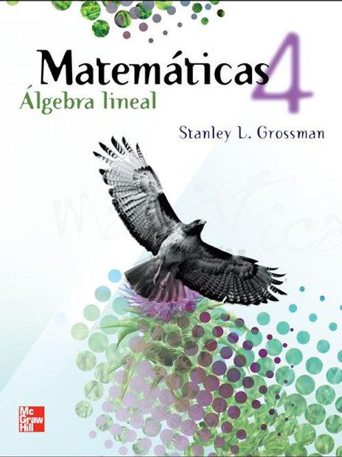 Matemáticas 4, Álgebra lineal