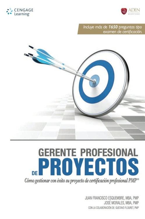 Gerente Profesional en dirección de proyectos PMP  ¿cómo gerenciar con éxito...