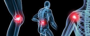 knee pain shoulder pain back pain
