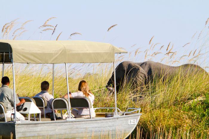 Camp-Xakanaxa-Boat-Safari(1).jpg