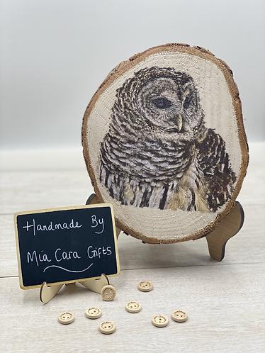 Hand Painted, Decoupaged Owl Wood Slice