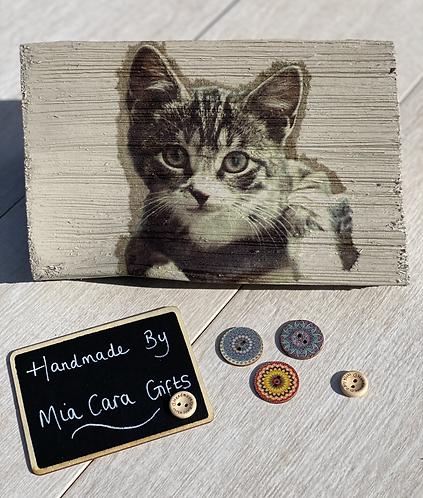 Hand Painted, Decoupaged Cat Log