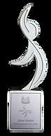 WSH Award.png