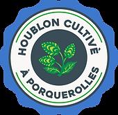 Houblon cultivé à porquerolles - Brasserie côte d'azur