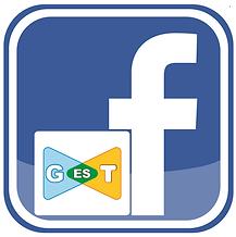 Fanpage-GEST.png