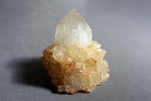 仙人掌水晶