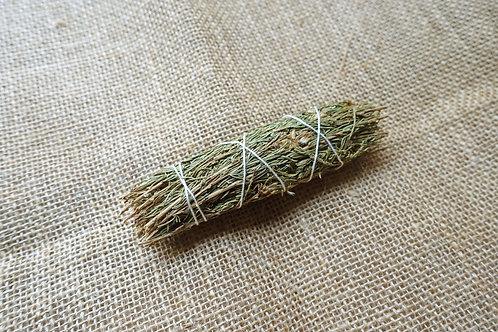 沙漠鼠尾草(小)