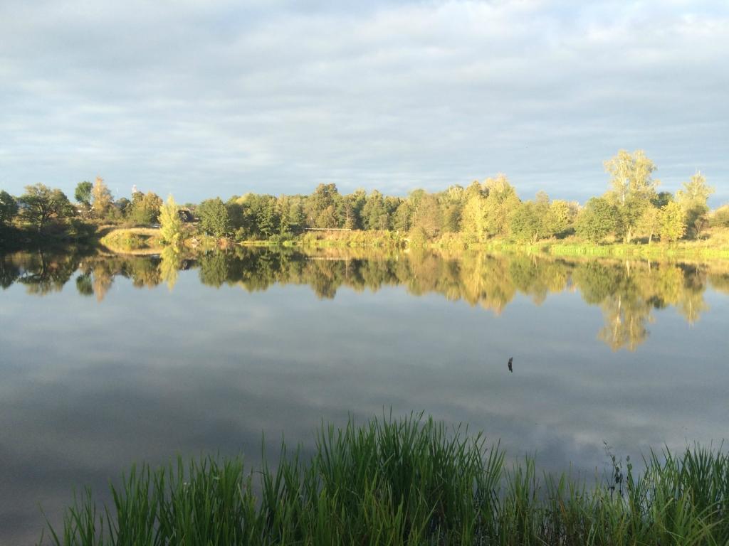 Большой рыболовный пруд под солнцем