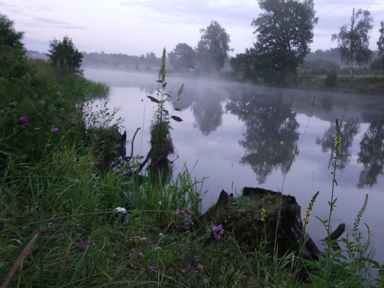 Утро на берегу озера