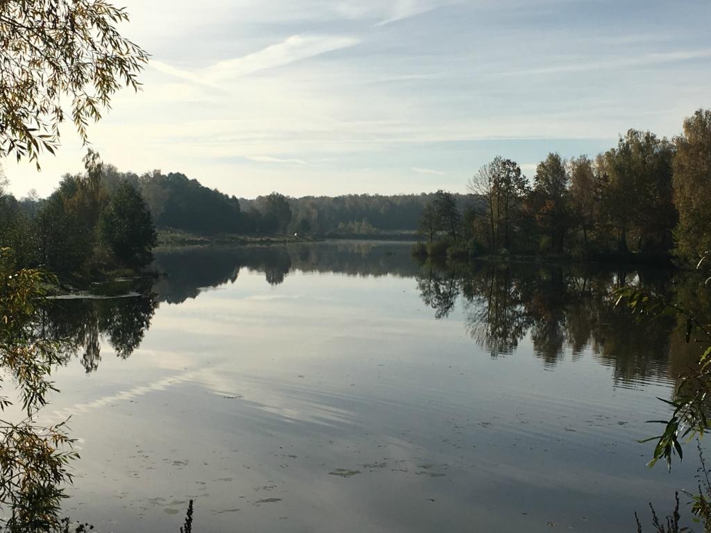 Большой рыболовный пруд