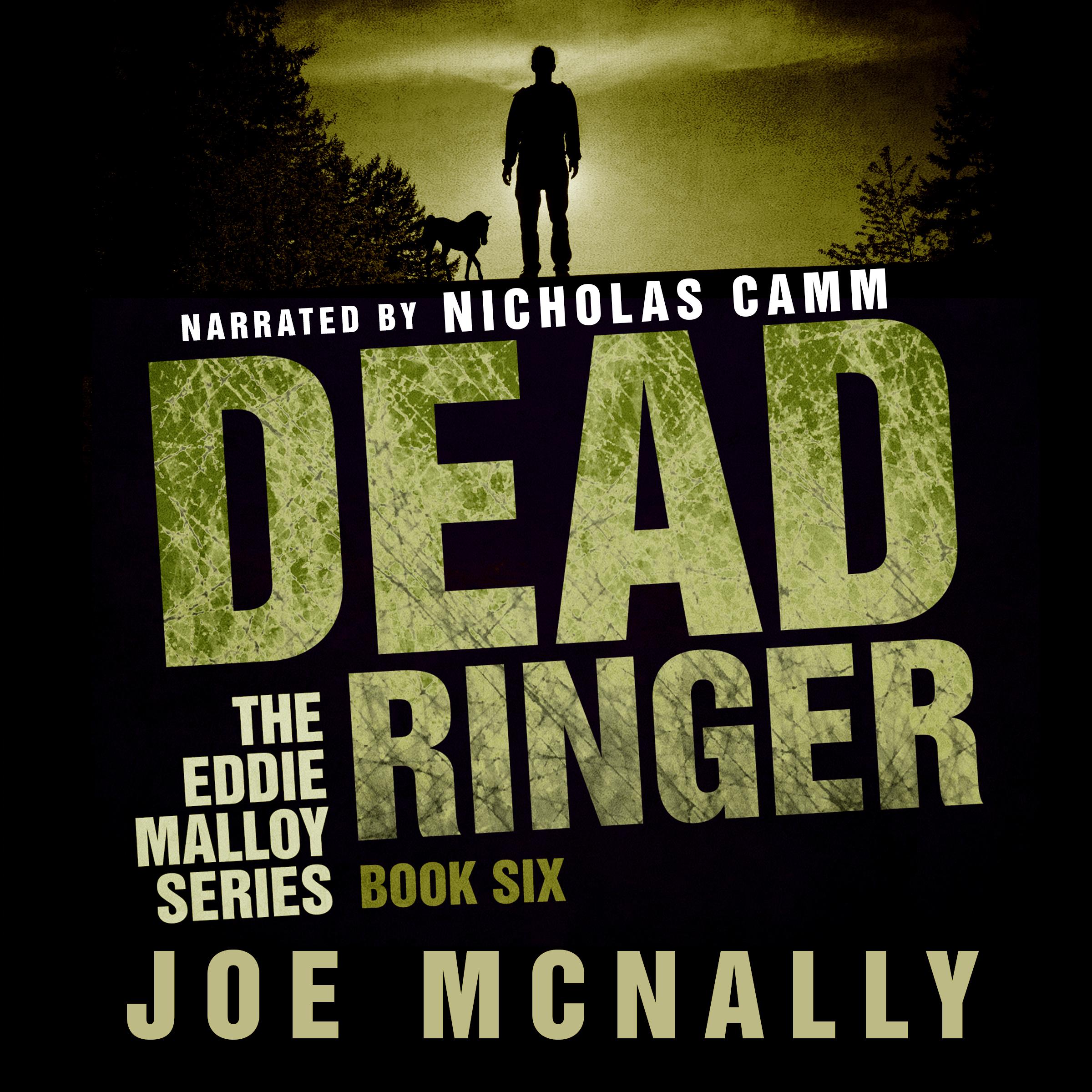 Dead Ringer Audiobook
