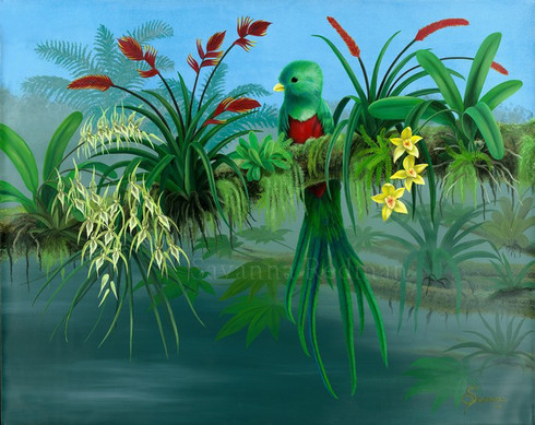 Resplendent Quetzal with orchids, bromeliad and tree frog.s