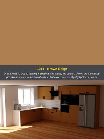 1011 - Brown Beige.png