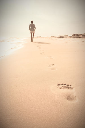beach-gff939f612_1920_edited.jpg