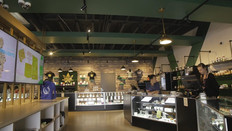 Cannibis Digital Signage in Dispensary.j