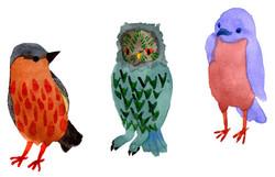 birds -welcome-