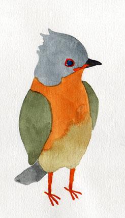 yama bird