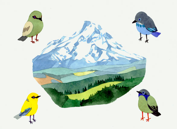 mountain and birds