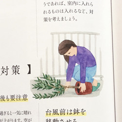 NHK趣味の園芸 栽培のコツがわかる ベランダガーデニンング