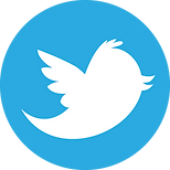 twitter-icon-65.png