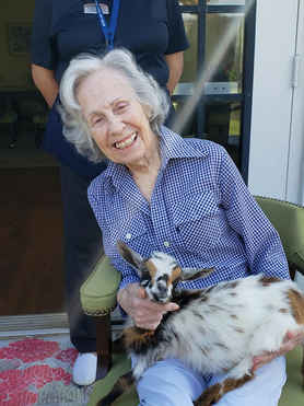Retirement Home Goat Therapy Visit