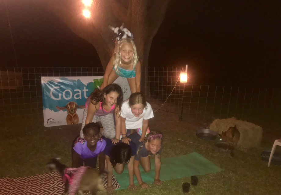 Goat Yoga Birthday Party Pyramid